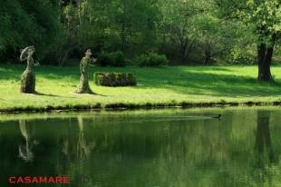 Grădina Botanică din Chişinău, Moldova   Ботанический сад Кишинев, Молдова
