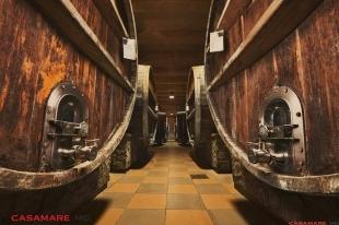 în vizită la beciurile chateau cojușna