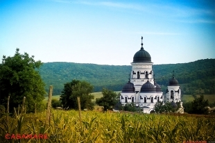 pelerinaj la mănăstirile din inima codrilor