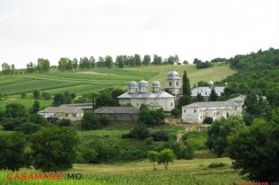mănăstirea dobrușa