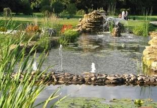 Parcul Dendrariu din Chisinau, Moldova | Парк Дендрарий - Кишинев, Молдова