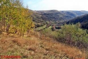 rezervația peisagistică la 33 de vaduri