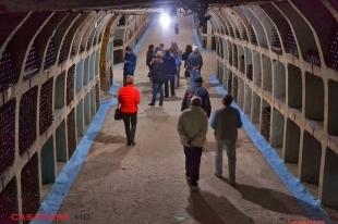 în vizită la galeriile subterane milestii mici