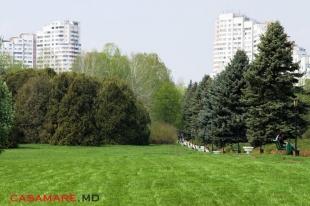 Парк Ботанический сад Кишинев