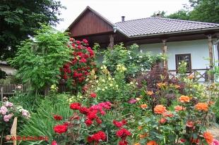 AgroPensiunea Casa Parinteasca