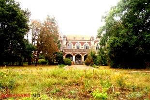 parcul dentrologic din satul ţaul