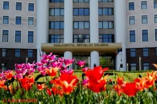 Parlamentul Republicii Moldova - Parlamentul RM, Moldova | Парламент РМ - Парламент Республики Молдова, Молдова