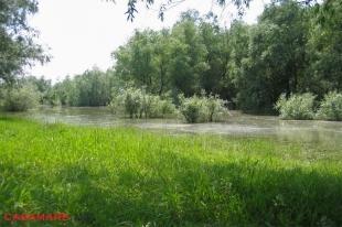 Rezervatia stiintifica Prutul de Jos - Moldova | Научный заповедник Прутул де Жос